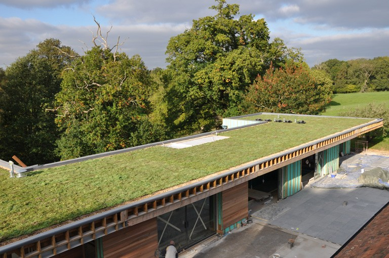 Green roof home